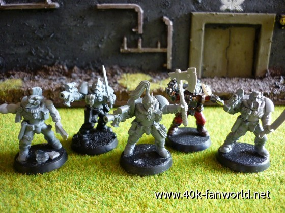 Wolfscouts WIP